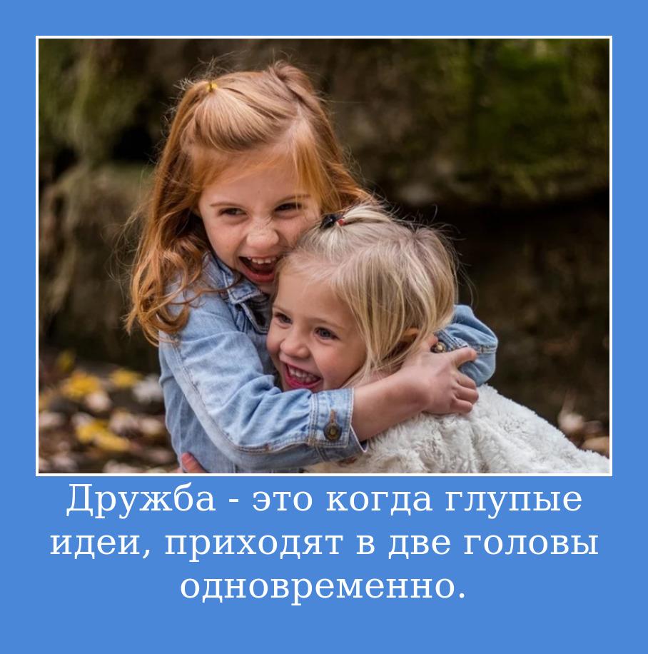 Дружба - это когда глупые идеи, приходят в две головы одновременно.