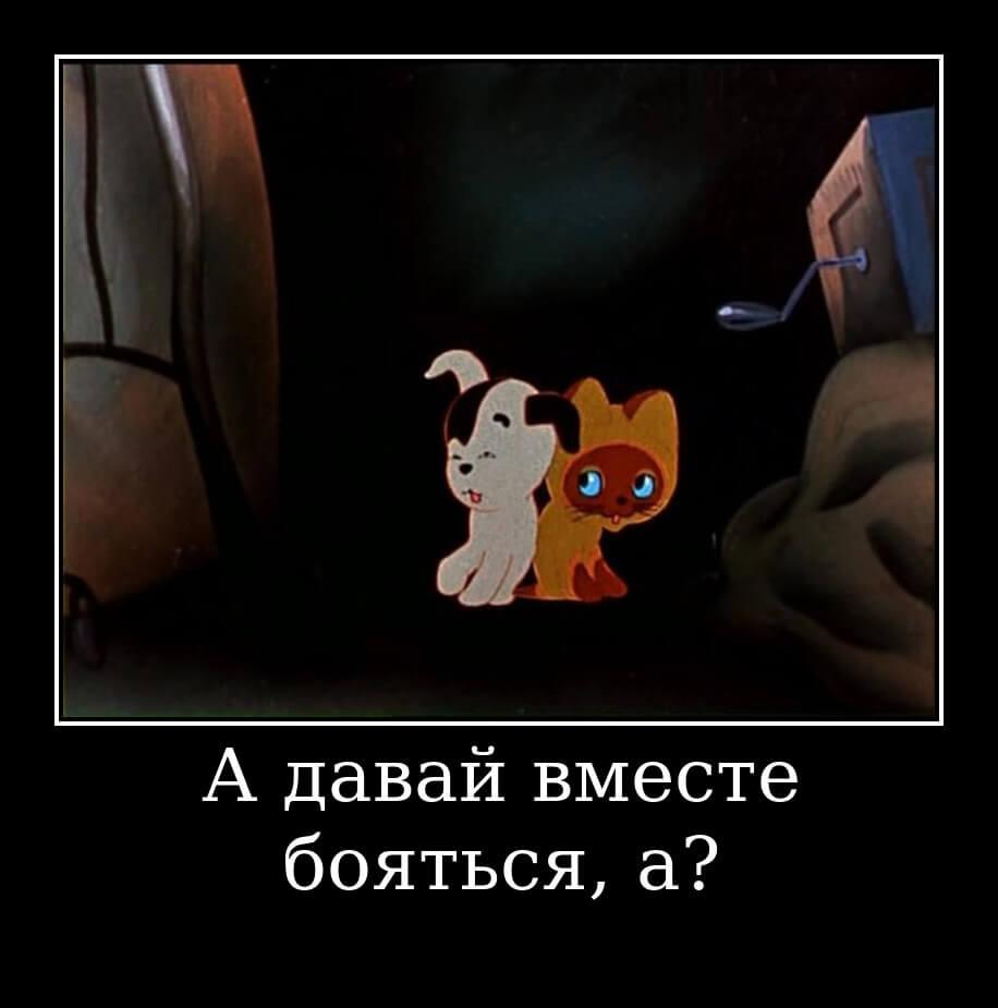 """На фото изображена цитата из мультфильма """"Котенок по имени Гав""""."""