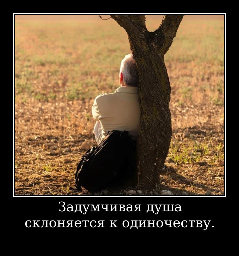 Задумчивая душа склоняется к одиночеству.