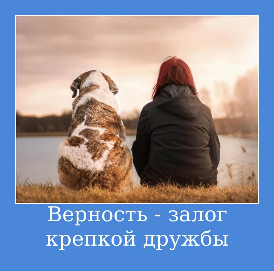 Верность - залог крепкой дружбы.