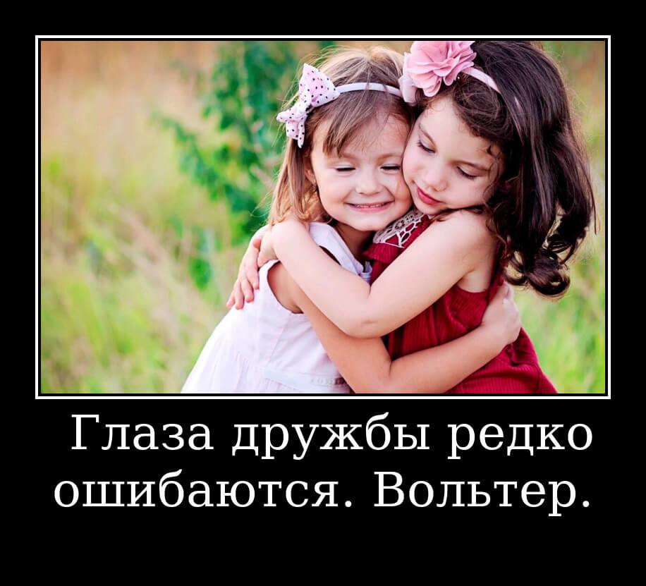 На фото изображена цитата Вольтера о дружбе.