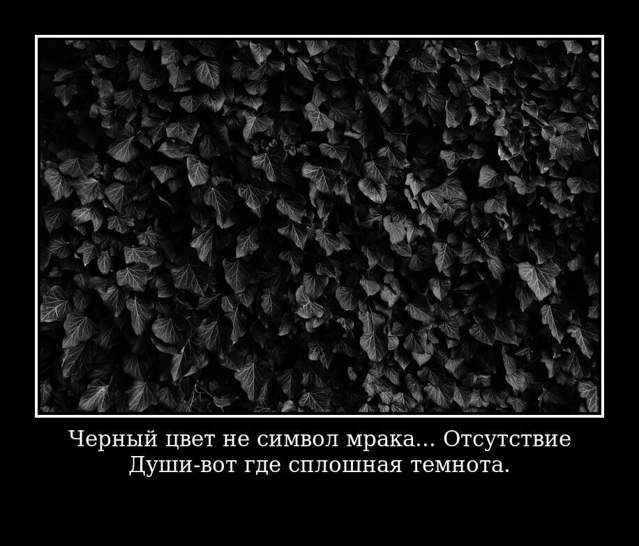 На фото изображена цитата о черном цвете.