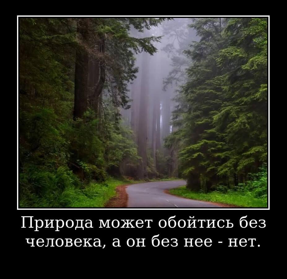 Природа может обойтись без человека, а он без нее - нет.