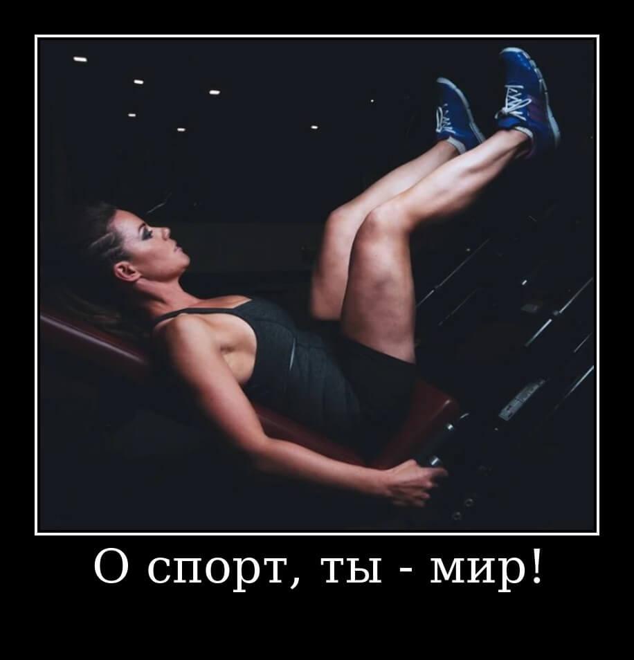 О спорт, ты — мир!