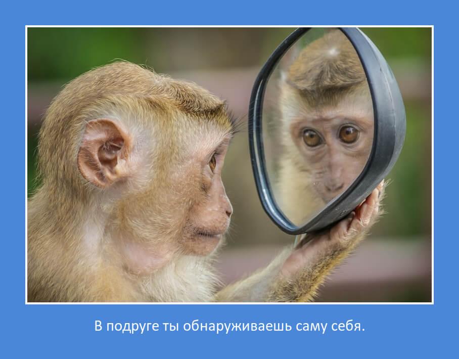 Цитата: В подруге ты обнаруживаешь саму себя.