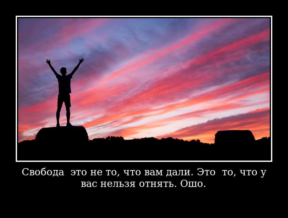 На фото изображено высказывание о свободе.