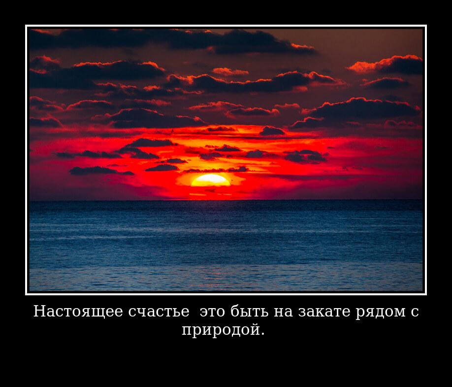 На фото изображена цитата про закат солнца.