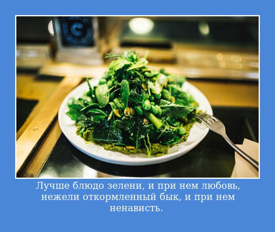 """НА фото изображена цитата """"Лучше блюдо зелени, и при нем любовь, нежели откормленный бык, и при нем ненависть.""""."""
