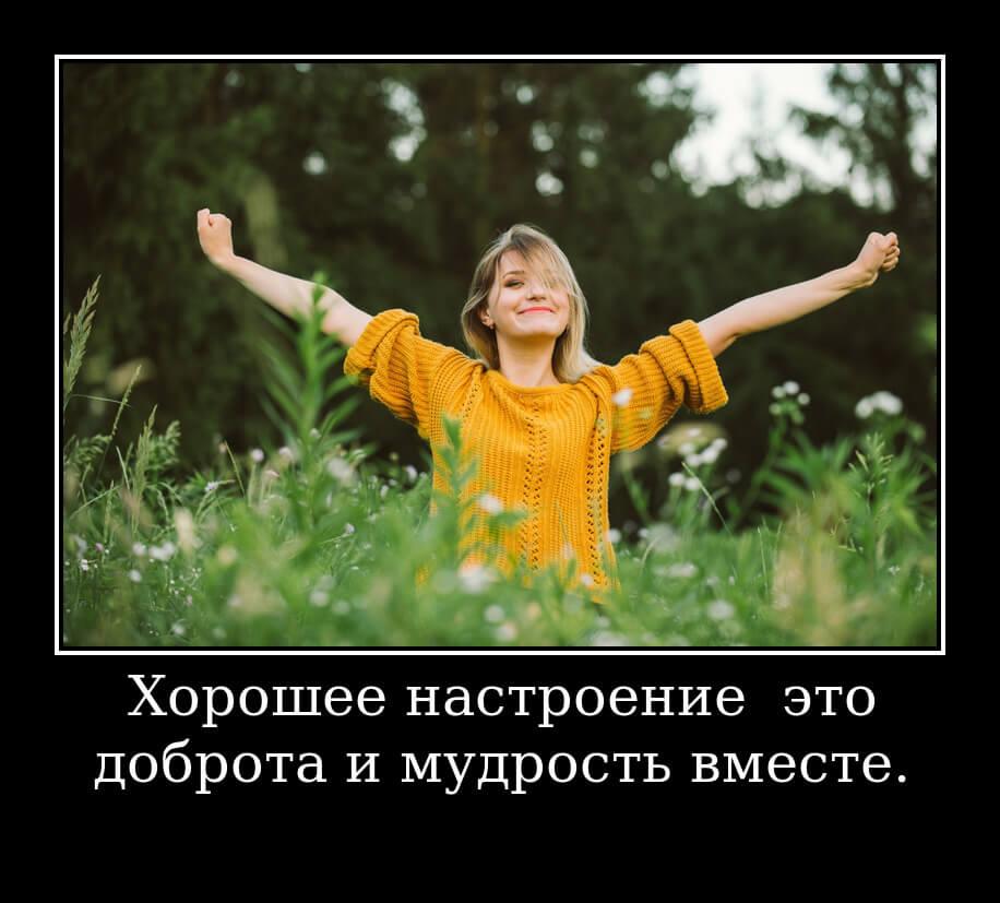 На фото изображено высказывание о хорошем настроении.