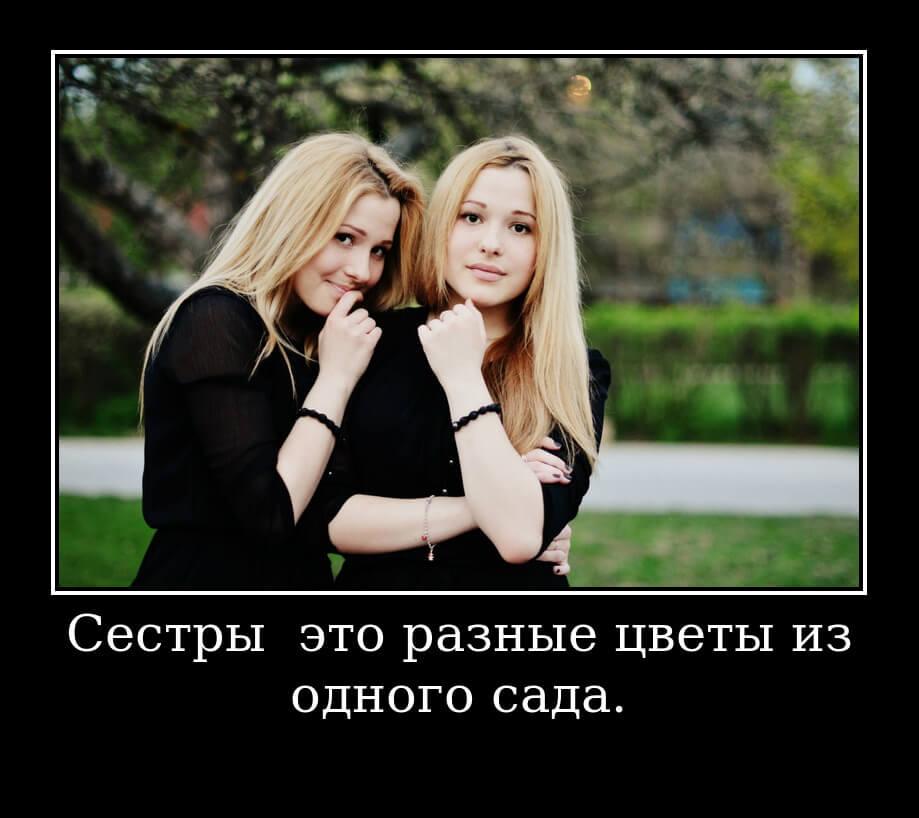 """На фото высказывание """"Сестры — это разные цветы из одного сада""""."""
