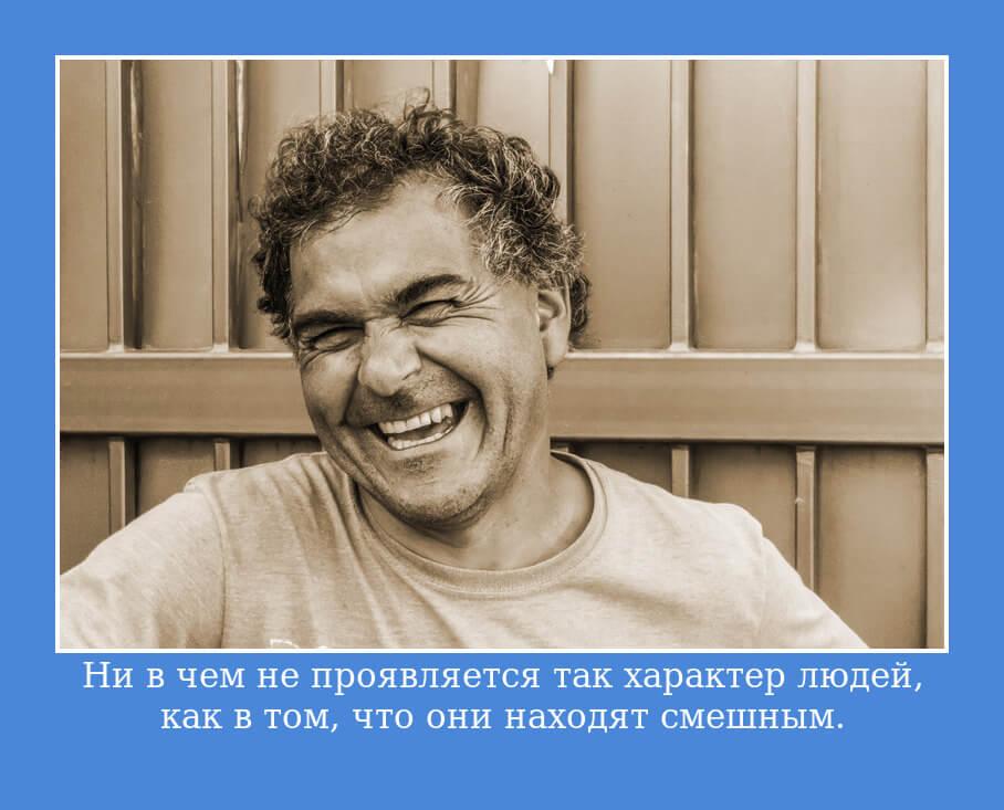 На фото изображена цитата Гете о человеческом характере.
