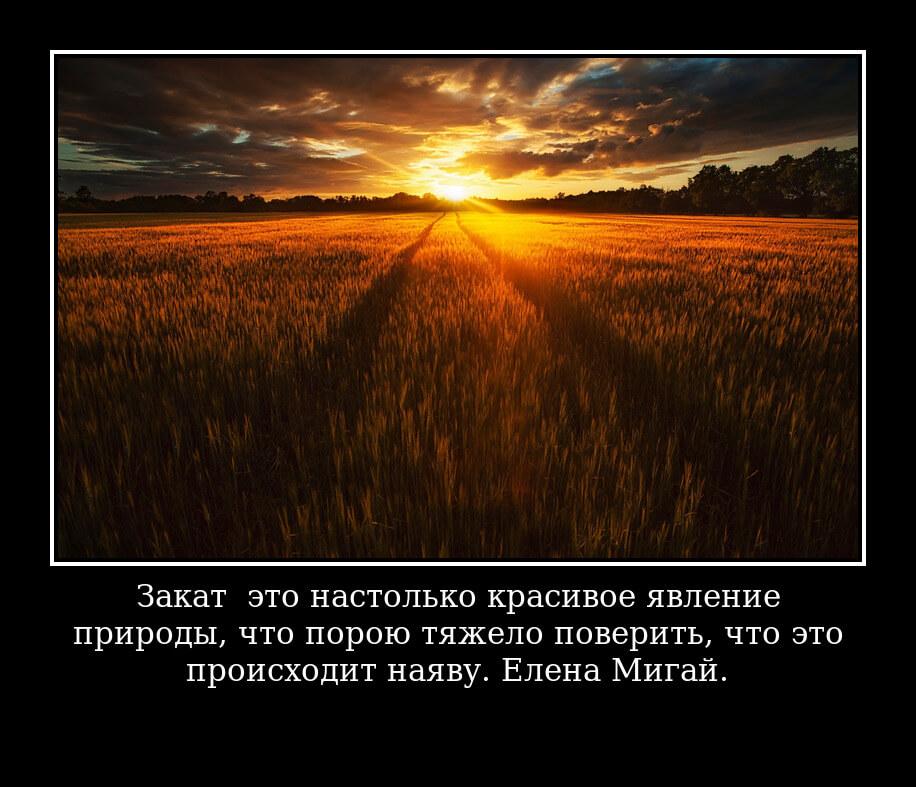 На фото изображена цитата о закате солнца.