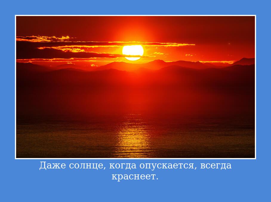 На фото изображена цитата про солнце.