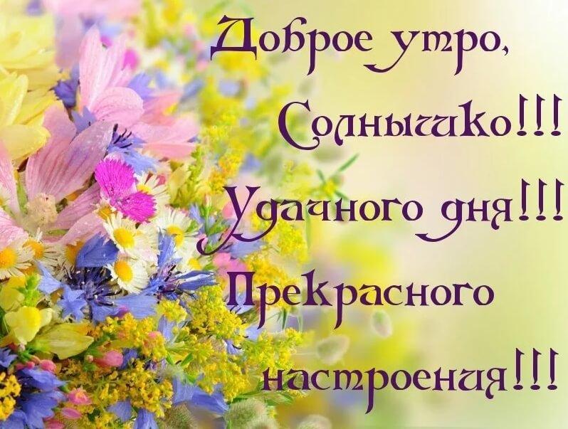 Доброе утро, солнышко! Удачного дня! Прекрасного настроения!