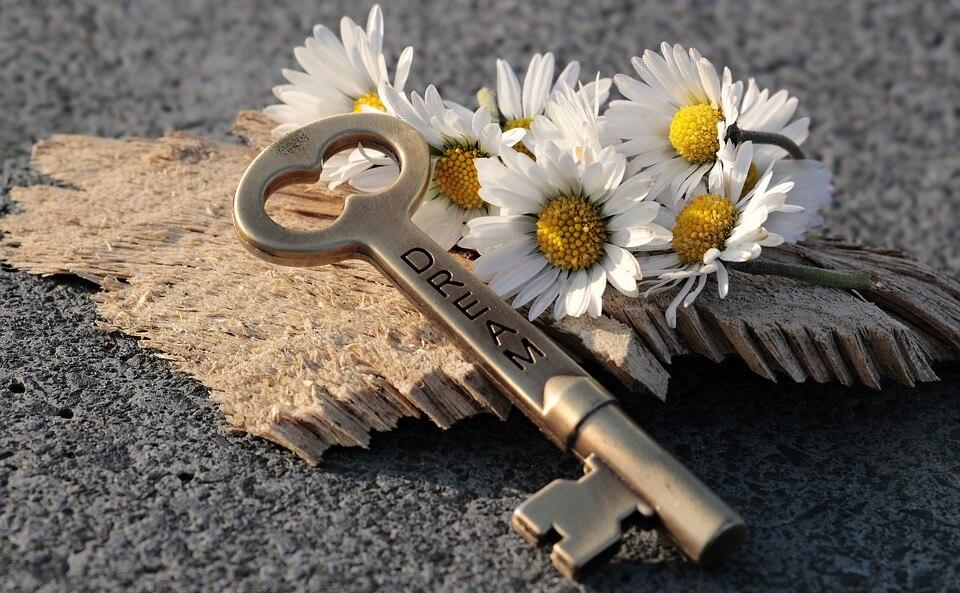 На фото изображен ключ с надписью Dream, лежащий в ромашках.