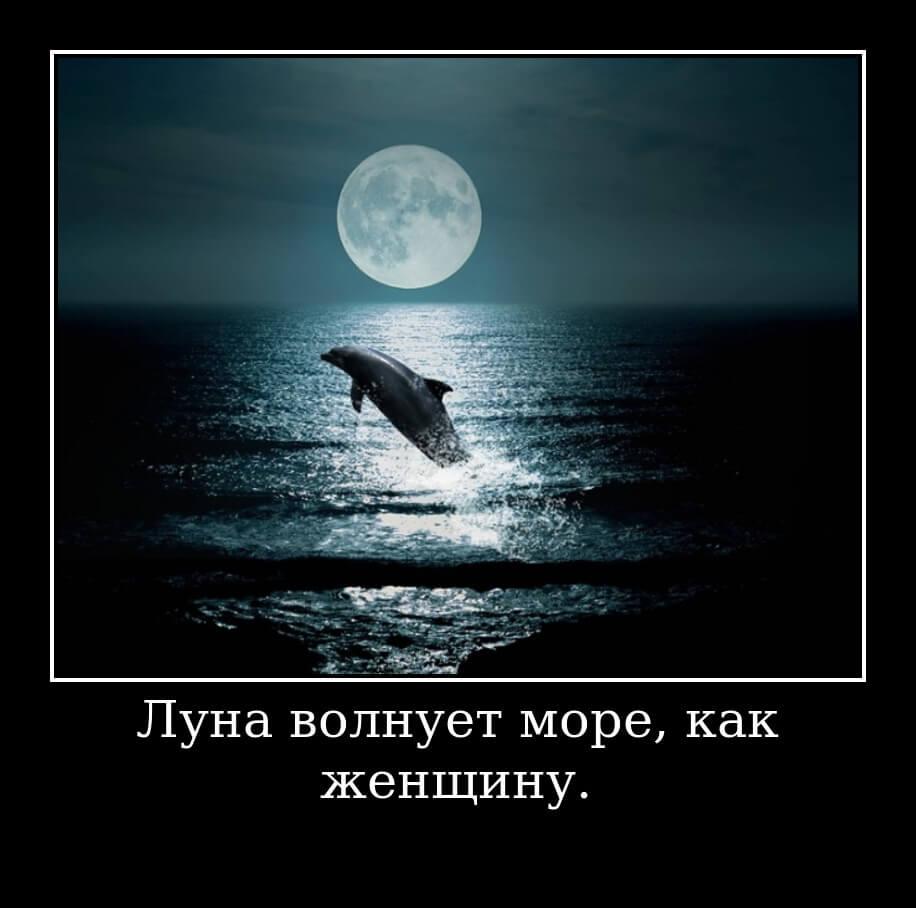 Луна волнует море, как женщину.