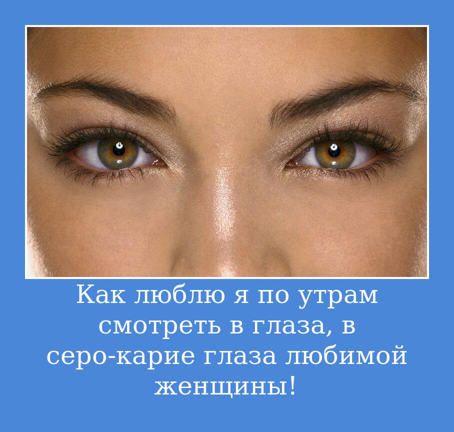 Как люблю я по утрам смотреть в глаза, в серо-карие глаза любимой женщины!