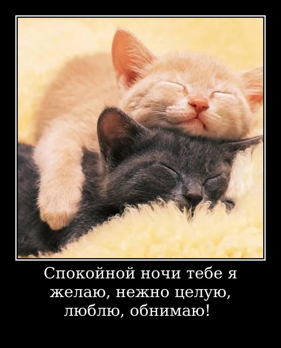 Спокойной ночи тебе я желаю, нежно целую, люблю, обнимаю!