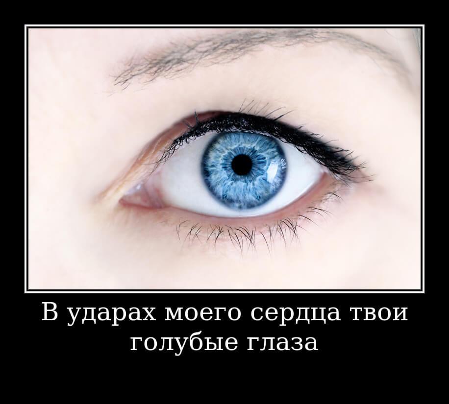 В ударах моего сердца твои голубые глаза…