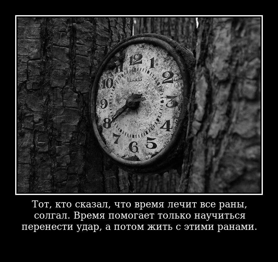 """На фото изображена цитата """"Тот, кто сказал, что время лечит все раны, солгал. Время помогает только научиться перенести удар, а потом жить с этими ранами""""."""