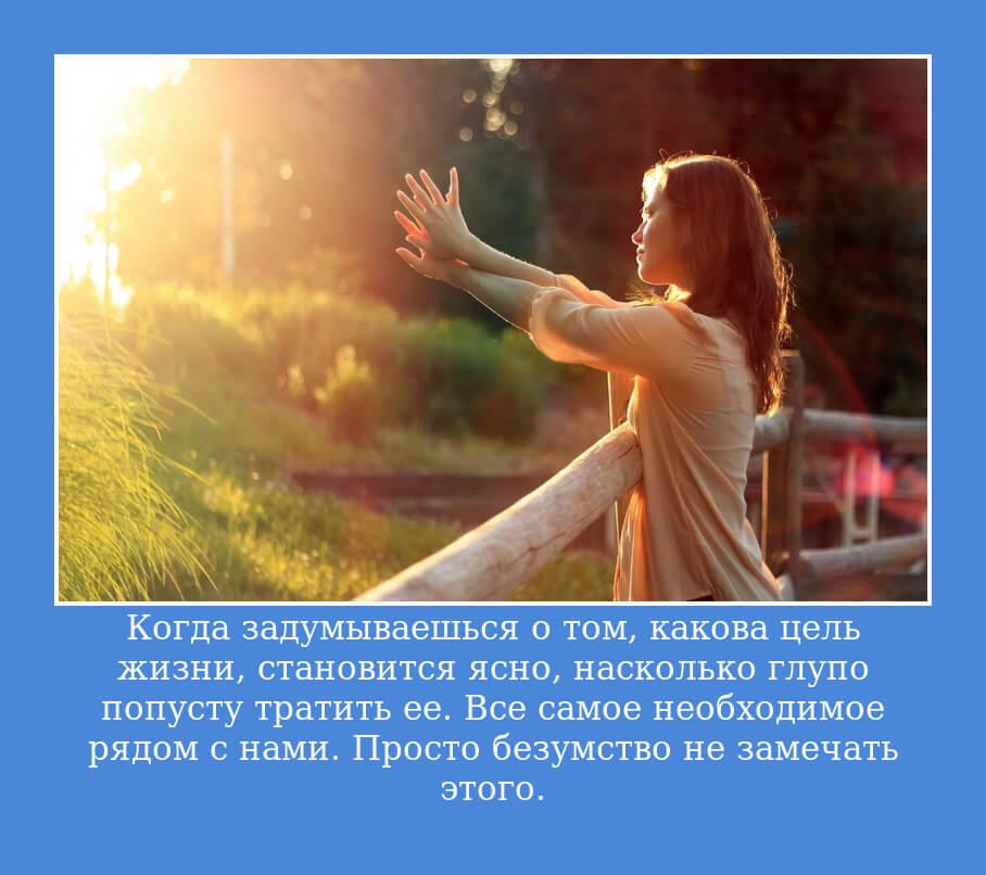 На фото изображена цитата про цель в жизни.