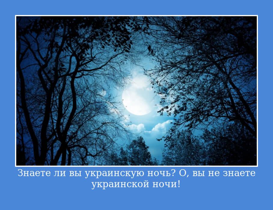 На фото изображено высказывание Николая Гоголя.