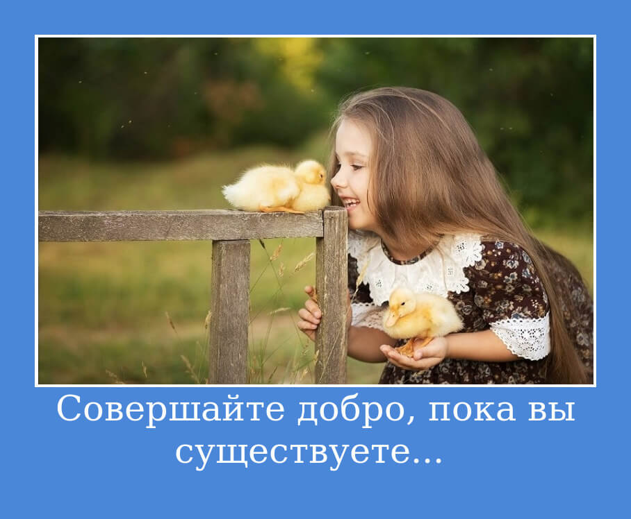 """На фото изображено высказывание """"Совершайте добро, пока вы существуете... """"."""