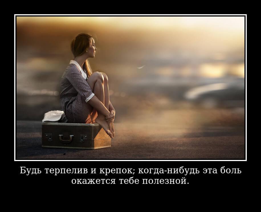 """На фото изображено высказывание """"Будь терпелив и крепок; когда-нибудь эта боль окажется тебе полезной""""."""