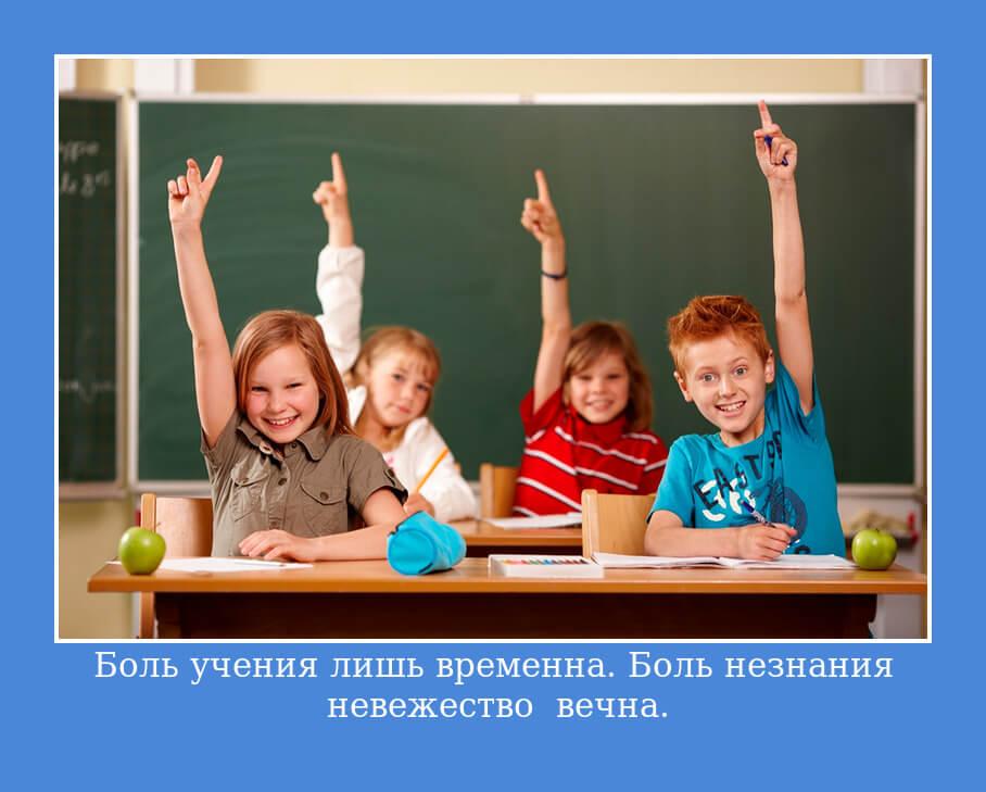 """На фото изображена цитата """"Боль учения лишь временна. Боль незнания – невежество – вечна""""."""