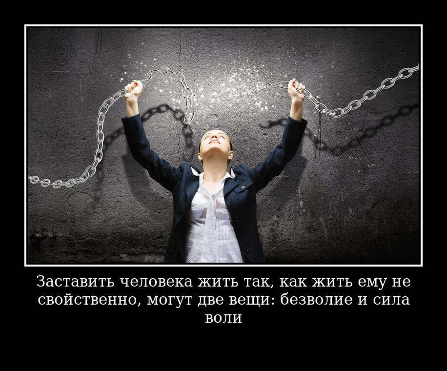 На фото изображена цитата про силу воли.