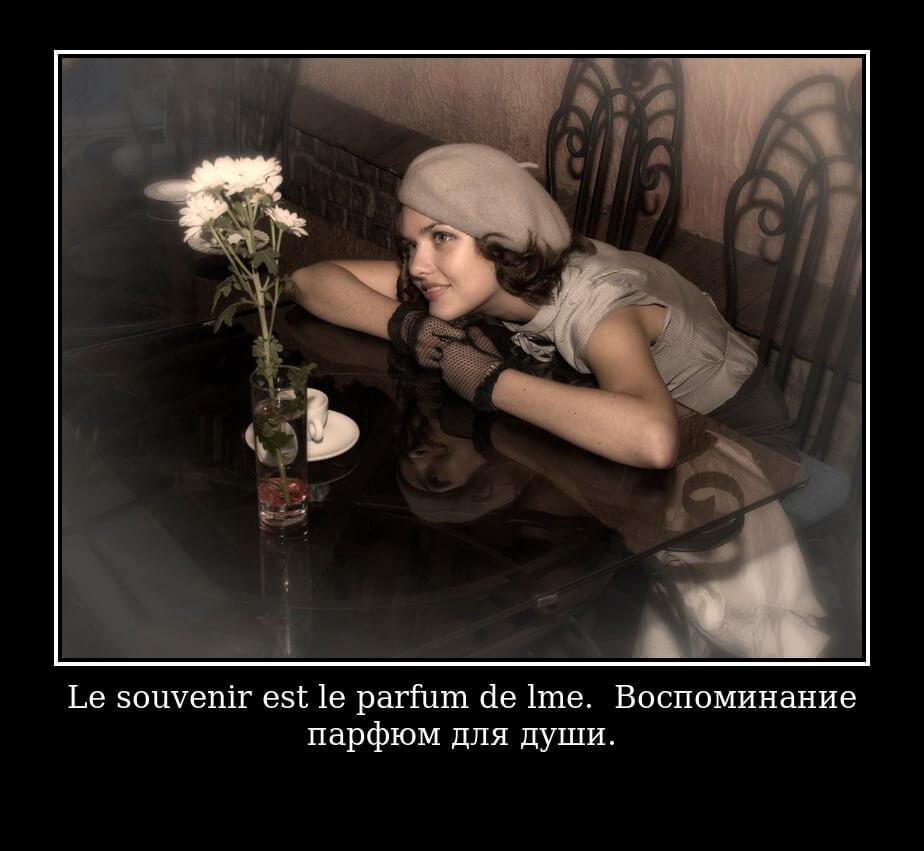 На фото изображена фраза на французском языке.