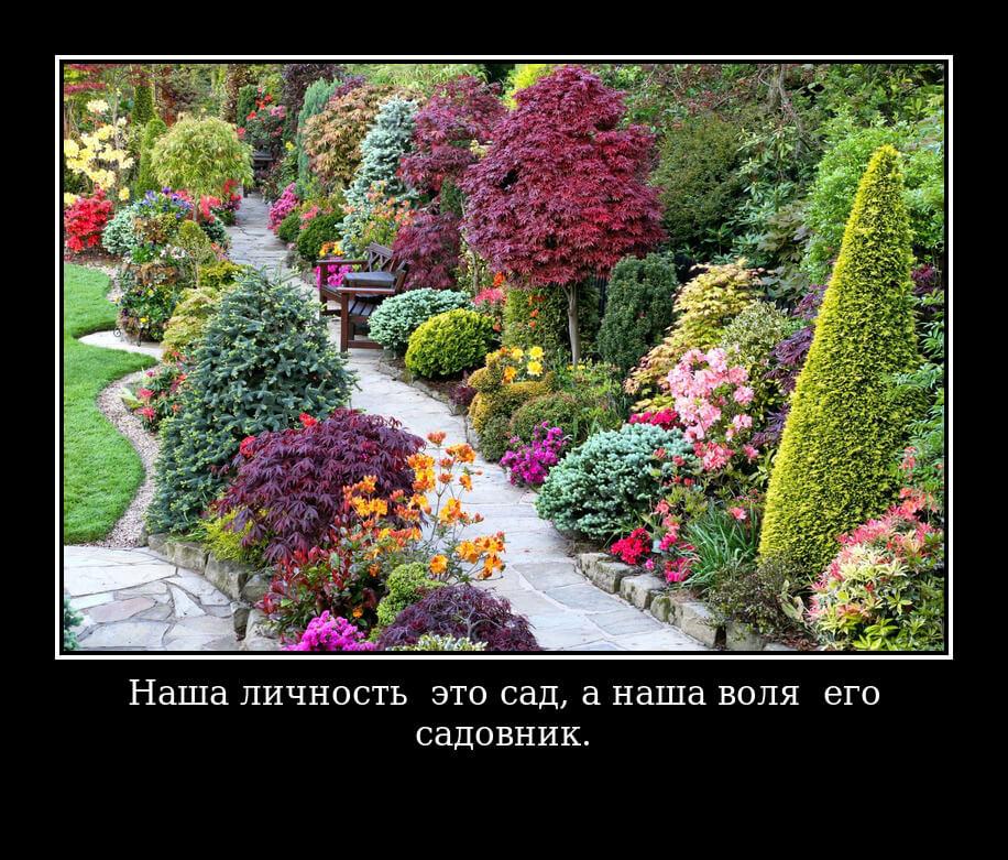 """На фото изображена цитата """"Наша личность — это сад, а наша воля — его садовник""""."""