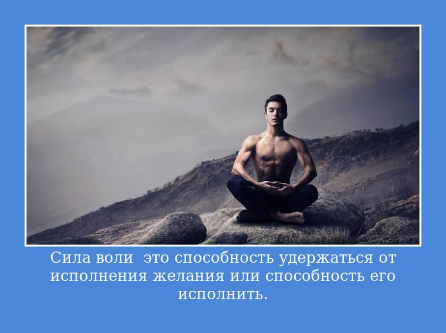 """На фото изображена цитата """"Сила воли — это способность удержаться от исполнения желания или способность его исполнить""""."""