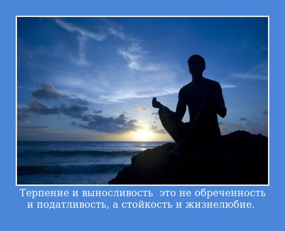 Терпение и выносливость – это не обреченность и податливость, а стойкость и жизнелюбие.