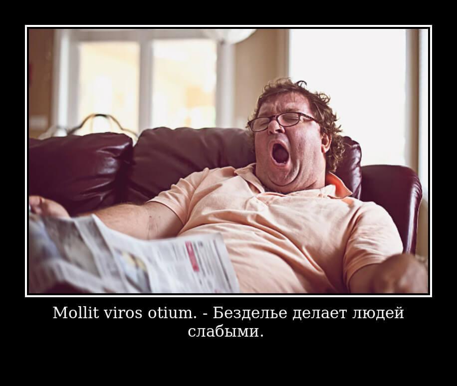 Mollit viros otium — Безделье делает людей слабыми.