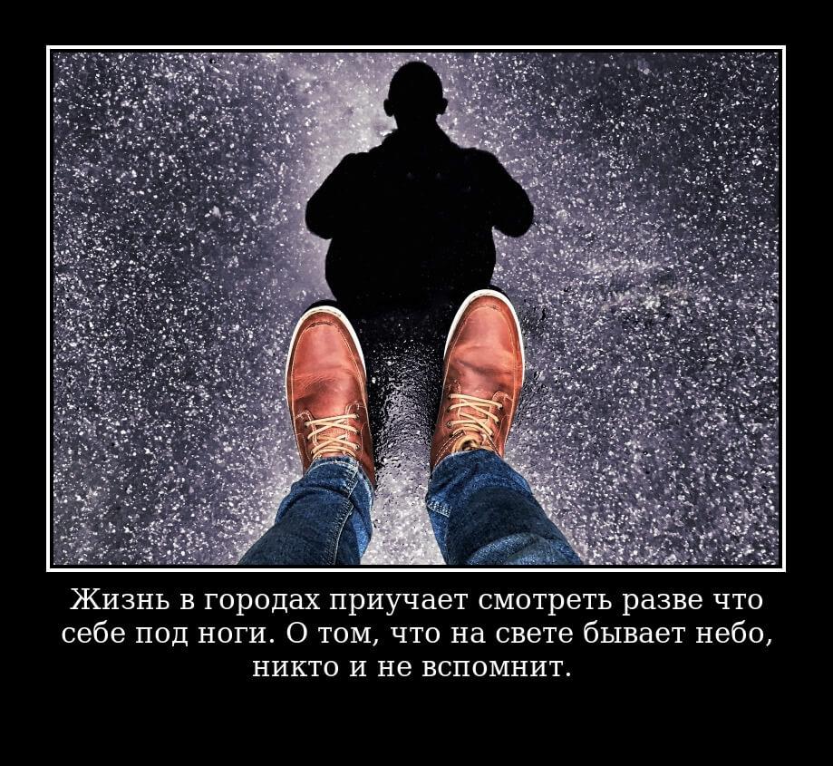 Жизнь в городах приучает смотреть разве что себе под ноги. О том, что на свете бывает небо, никто и не вспомнит.