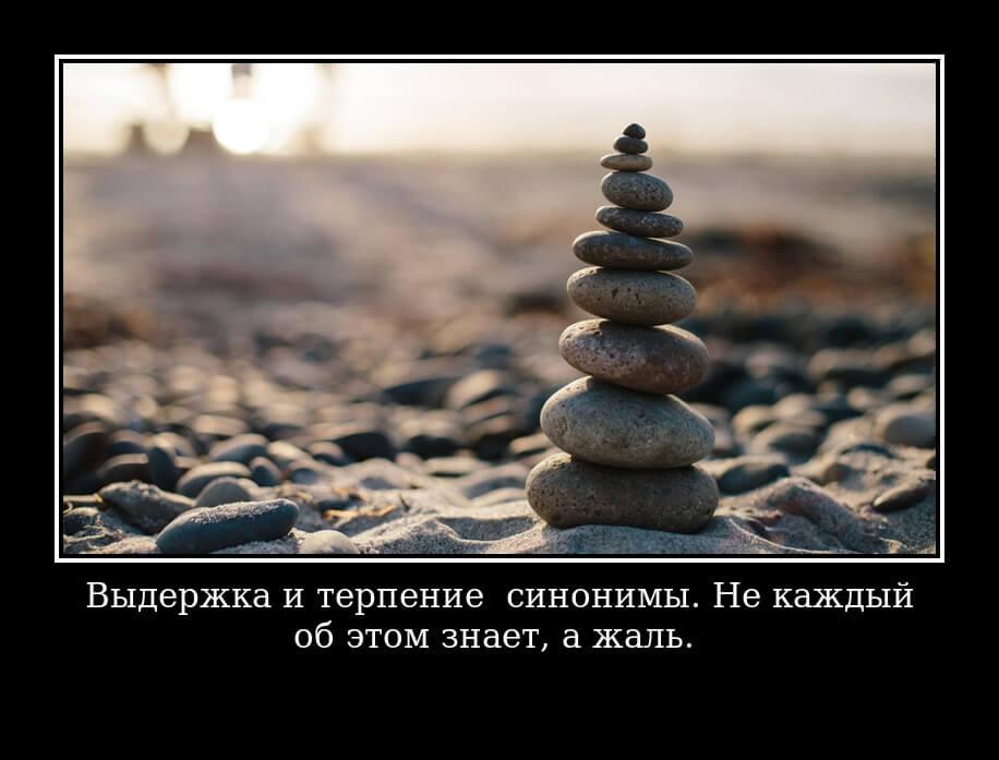 Выдержка и терпение – синонимы. Не каждый об этом знает, а жаль.