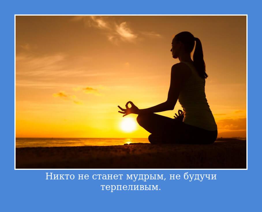 Никто не станет мудрым, не будучи терпеливым.