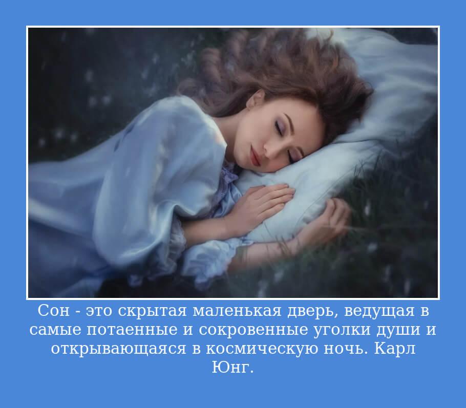 Сон — это скрытая маленькая дверь, ведущая в самые потаенные и сокровенные уголки души и открывающаяся в космическую ночь. Карл Юнг.