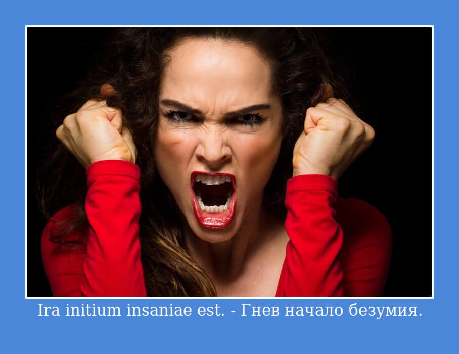Ira initium insaniae est — Гнев начало безумия.