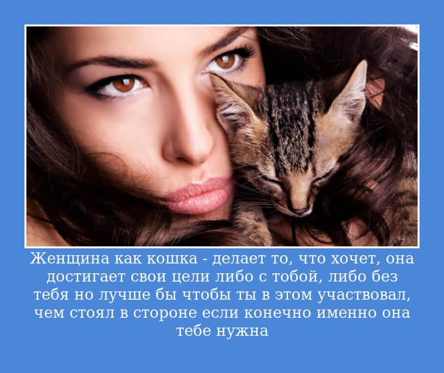 Женщина как кошка — делает то, что хочет, она достигает свои цели либо с тобой, либо без тебя… но лучше бы чтобы ты в этом участвовал, чем стоял в стороне… если конечно именно она тебе нужна.