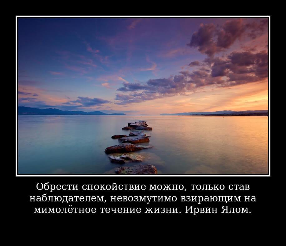Обрести спокойствие можно, только став наблюдателем, невозмутимо взирающим на мимолётное течение жизни. Ирвин Ялом.