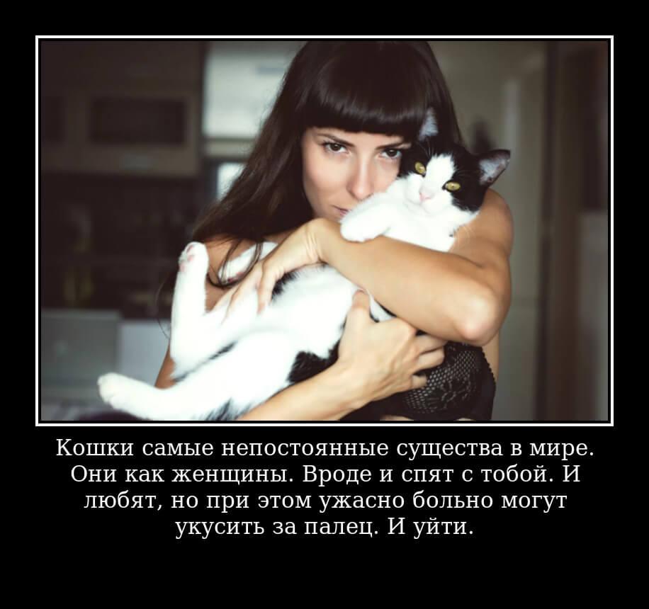 Кошки самые непостоянные существа в мире. Они как женщины. Вроде и спят с тобой. И любят, но при этом ужасно больно могут укусить за палец. И уйти.