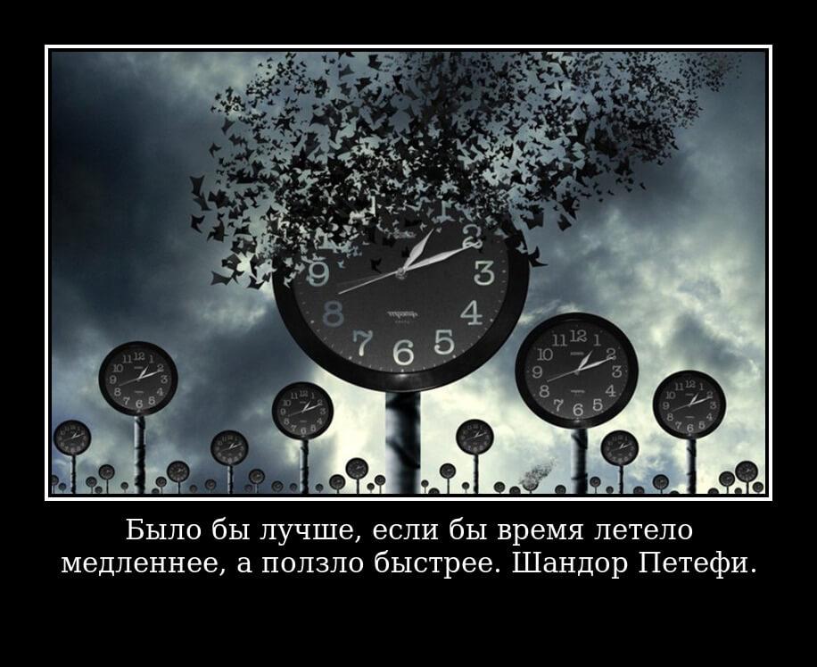 Было бы лучше, если бы время летело медленнее, а ползло быстрее. Шандор Петефи.