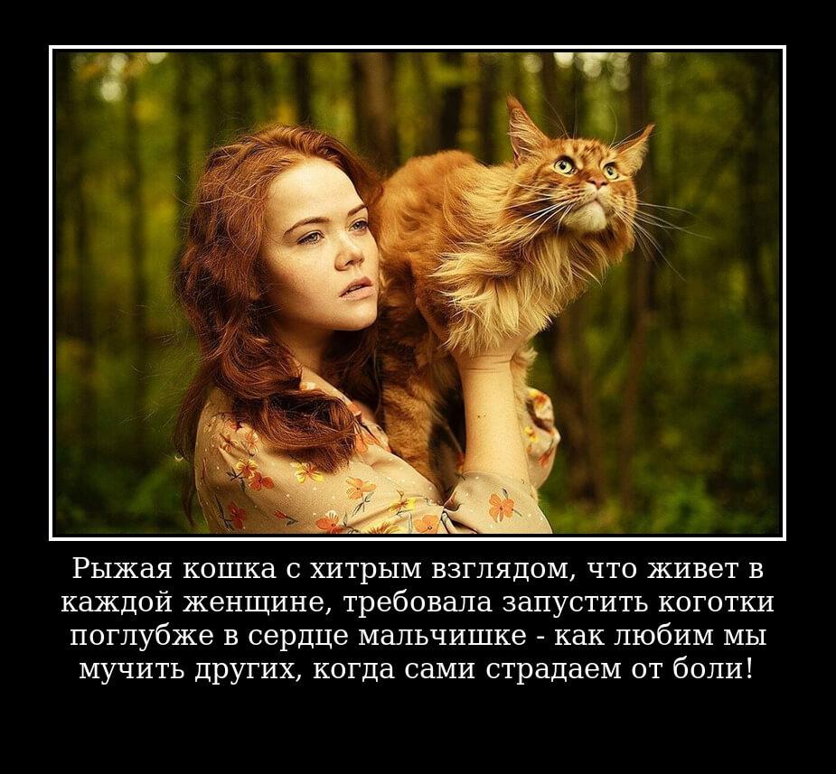 Рыжая кошка с хитрым взглядом, что живет в каждой женщине, требовала запустить коготки поглубже в сердце мальчишке — как любим мы мучить других, когда сами страдаем от боли!