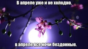 В апреле уже и не холодно, в апреле все ночи бездонные.