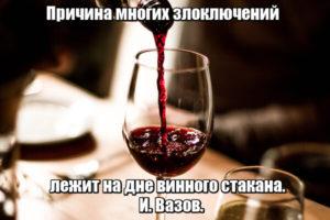 Причина многих злоключений лежит на дне винного стакана. И. Вазов.
