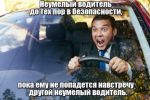 Неумелый водитель до тех пор в безопасности, пока ему не попадется навстречу другой неумелый водитель. Фрэнсис Скотт Фицджеральд.