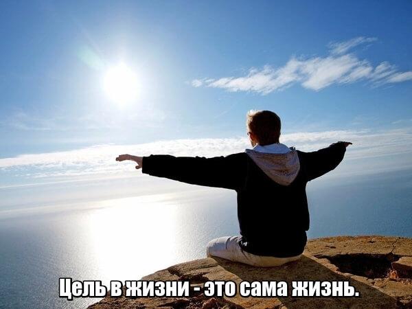 Цель в жизни — это сама жизнь.
