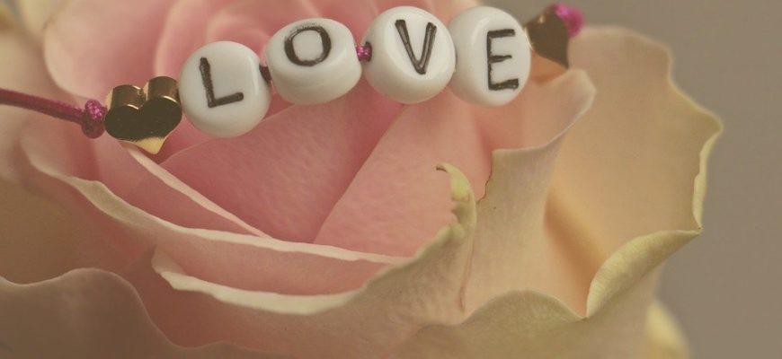Браслет на розе. Какие есть цитаты про любовь в картинках.